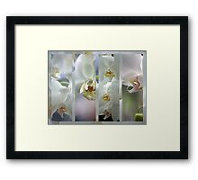 Heavenly Gourmet Framed Print