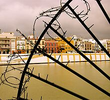 Barbed Colourful Seville by lepuzzi