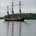 Tall Ship by Lynn Armstrong
