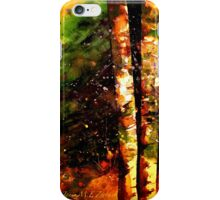 Winter..The Two iPhone Case/Skin