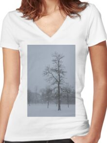 Whispering Snowflakes Women's Fitted V-Neck T-Shirt