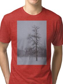 Whispering Snowflakes Tri-blend T-Shirt