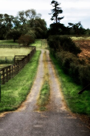 Old Country Road by Jeffrey  Sinnock