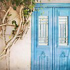 Blue Door with Vine by eyeshoot