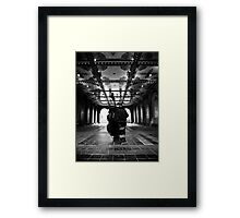 The Bethesda Arcade Framed Print