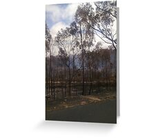 Woodside 3 ~ Black Saturday Greeting Card