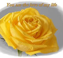 Yellow Rose Love Card and Gifts by hummingbirds