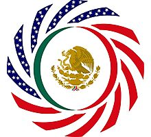Mexican American Multinational Patriot Flag Series 1.0 Photographic Print