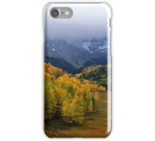 Little Meadow of the Sublime iPhone Case/Skin