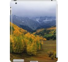 Little Meadow of the Sublime iPad Case/Skin