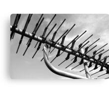 tv antenna Canvas Print