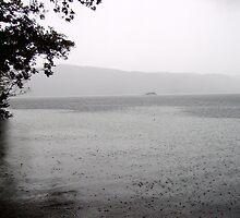 Rain Rain Go Away by Ladymoose