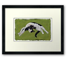 Zorro is watching - Green Framed Print