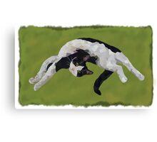 Zorro is watching - Green Canvas Print