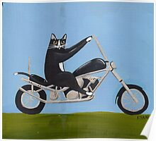 Motorcycle Cat Poster