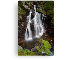 Upper Section of Corney Brook Falls Canvas Print