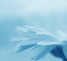whispering blue by Angel Warda