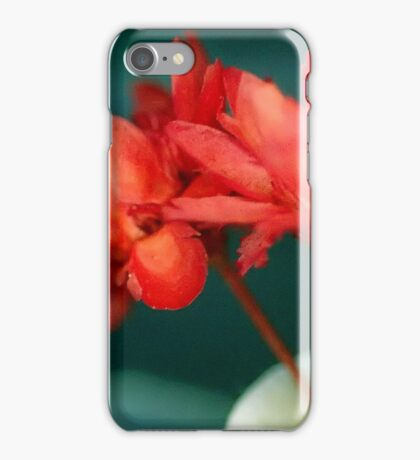 Red Flowers Macro iPhone Case/Skin