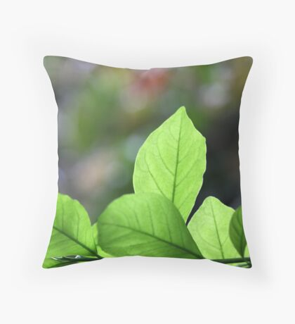 winter light catcher Throw Pillow