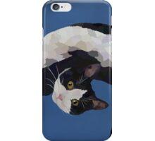 Zorro is watching - Blue iPhone Case/Skin