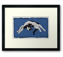 Zorro is watching - Blue Framed Print