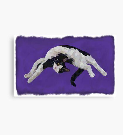 Zorro is watching - Purple Canvas Print