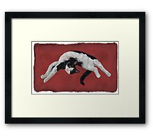 Zorro is watching - Red Framed Print