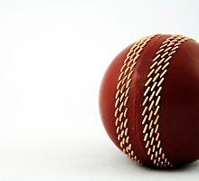 Nostalgic Toys Series - Cricket by KirstyStewart