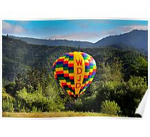 beautiful balloon Poster