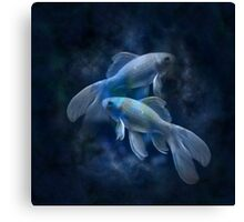 Zodiac signs - Fishes Canvas Print