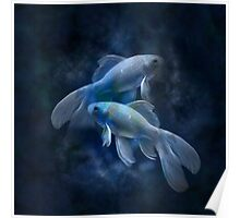 Zodiac signs - Fishes Poster