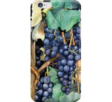 Grapes Ready To Harvest iPhone Case/Skin