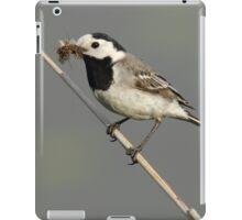 Motacilla alba iPad Case/Skin