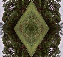 Crazy Trees by HeavenlyCanvas