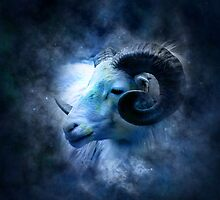 Zodiac signs - aries by tanabe