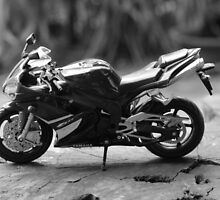 Yamaha YZF-R1 Model (B&W) by nurulazila