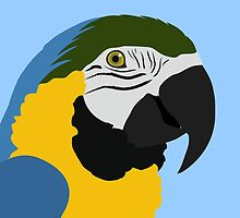 Blue and Gold Macaw Parrot by Jacqueline Turton