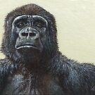 Gorilla by artbyakiko