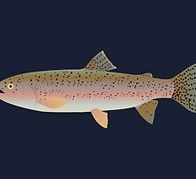Rainbow Trout Swimming Underwater by Jacqueline Turton