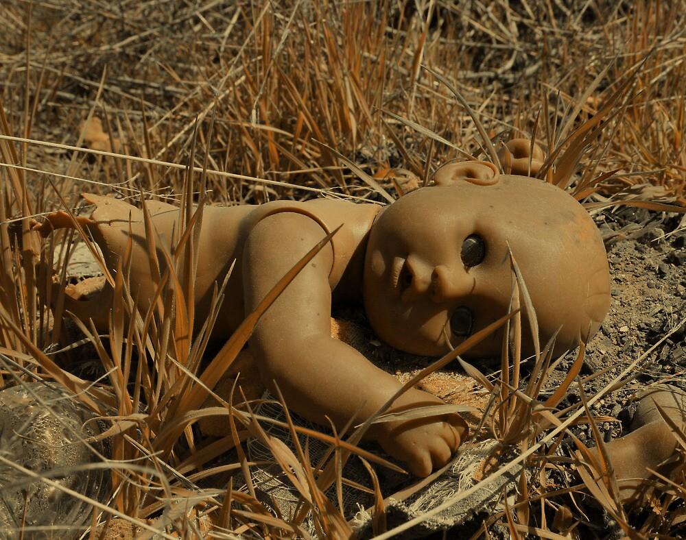 No one leaves Baby in the desert...  by Cody  VanDyke
