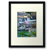 Tranquil Pond Framed Print