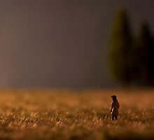 Something's on the Horizon - a girl in a field at dusk by jennifernichole