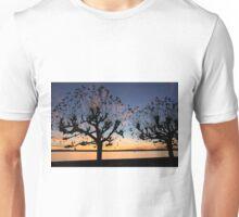 Sunset at Meersburg - Lake Constance Unisex T-Shirt