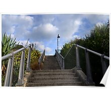 Up The  Steps Poster