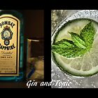 Gin and Tonic by SharonAHenson