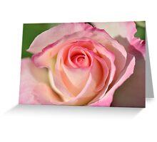 Shades Of Pink Seduction Greeting Card