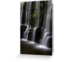Guide Falls, Tasmania Greeting Card