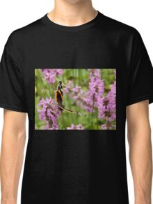 Red Admiral Butterfly on Purple Classic T-Shirt