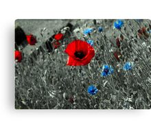 Red and Blue Flowers Canvas Print
