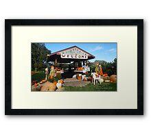 Shiloh Farm in Longbranch Washington Framed Print